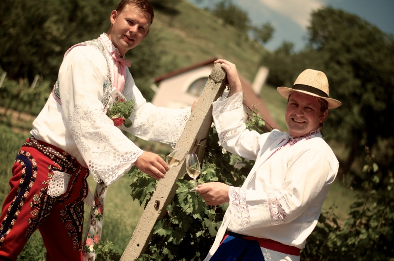 slovacka vinoteka 1