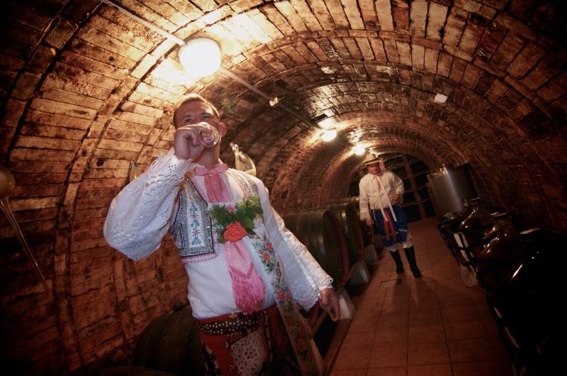 slovacka vinoteka 3