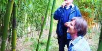 bambusova-zahrada-troja